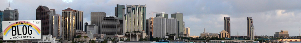 Hawaii Blog header image 1